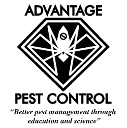 Advantage Pest Control, Inc.